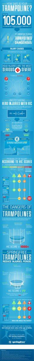 sft-infographic_650